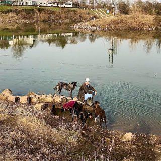 Hundemensch #hundeschule #mannheim #training #heidelberg#zaraverzaubert #bardino #hundeliebe #hund#hunde#hundeportrait #freundaufvierpfoten #hundewelpen #tierheimhunde #claudiakschulz #hundeerziehung #auslandshunde