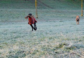 Klein aber oho, Yaiza hat mit Erfolg das Holz abgejagt und nun gibt sie es so schnell nicht wieder her #hundeschule #mannheim #training #heidelberg#zaraverzaubert #bardino #hundeliebe #hund#hunde#hundeportrait #freundaufvierpfoten #hundewelpen #tierheimhunde #claudiakschulz #hundeerziehung #auslandshunde#podencomix #podenco #goldenretriever #hundespaziergang #hundespass #winter #hundespiel #gluecklicherhund