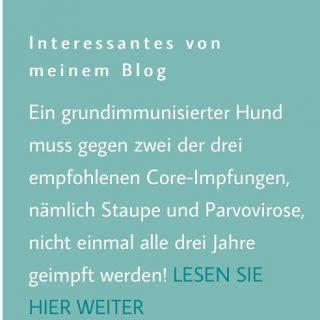Das Themen Impfen ist auch bei Haustieren umstritten. Ich stelle euch auf meiner Webseite die fortschrittliche Empfehlung der StIKo Vet vor. Link in der Bio #hundeschule #mannheim #training #heidelberg#zaraverzaubert #bardino #hundeliebe #hund#hunde#hundeportrait #freundaufvierpfoten #hundewelpen #tierheimhunde #claudiakschulz #hundeerziehung #auslandshunde #impfen #hundeimpfen #tiergesundheit #tierarzt #tierarztpraxis #tierarztbesuch #hundetrainerin #hundetraining